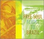 FreeSoulFlightToBrazil.jpg